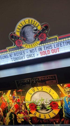 Guns N Roses Pinball Topper – official licence